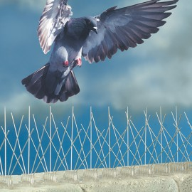 stainless steel pigeon spikes